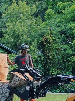tree removal in Kerrville or Boerne, TX